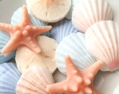 Beach Seashell Soaps - 5 sets party favor - soap favors - shower favor - Beach Wedding - summer ocean Shell sand dollar and starfish soaps