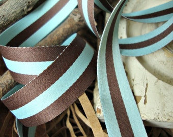 Chocolate Brown and Robins Egg Blue Reversible Stripe Ribbon