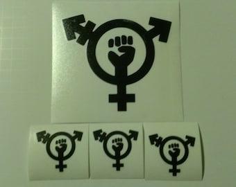 4 Decal set : 1 Large Trans-Feminism + 3 Small Trans-Feminism Vinyl Decals