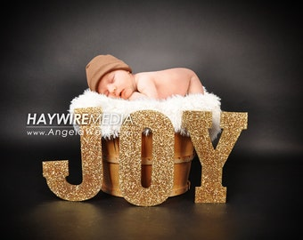 Newborn, Baby, Toddler, Child, Basket Photography Digital Backdrop Prop for Photographers with Christmas JOY Background with Fur Coverup