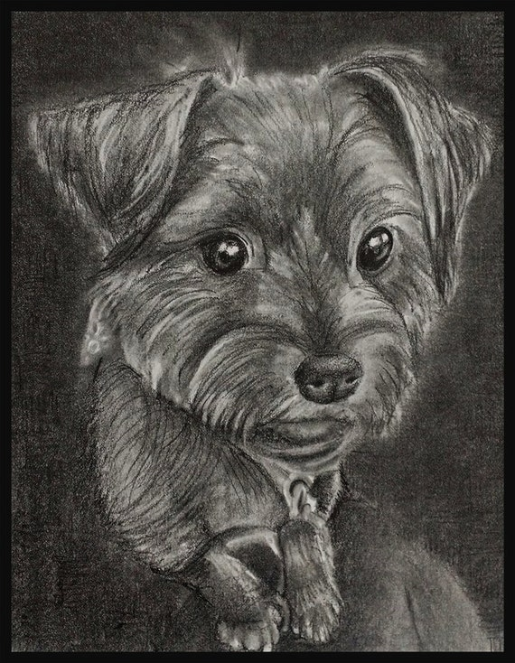 Custom pet pictures from your photo. Your memories come to life again in Nica's exquisitely detailed portraits. 25% off Sale!