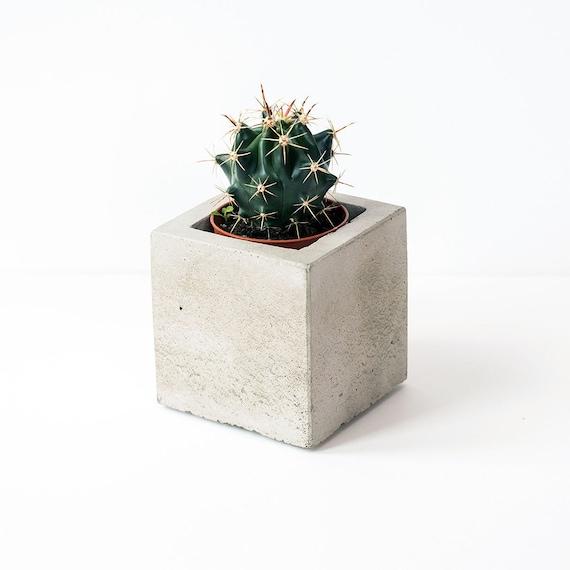 Cube Planters: Cube Concrete Planter / Plant Pot Plant Included