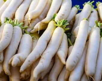 Daikon Radish - 100 seeds (Organic/non-GMO)