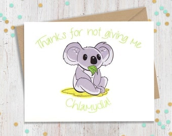 "Shop ""koala"" in Paper & Party Supplies"