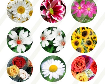Flowers digital collage sheet 4x6 for bottle cap INSTANT DOWNLOAD