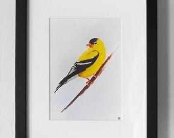 Finch Watercolor Illustration - Print
