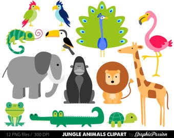 Zoo animal clip art | Etsy