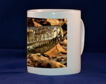 Snake on a mug