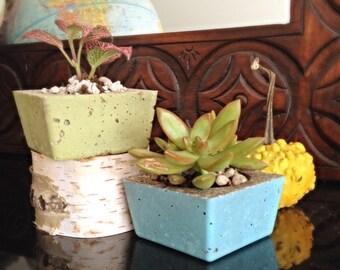 Planters/2 Urban modern planters/concrete square planters/desk organizer/minimalist home decor