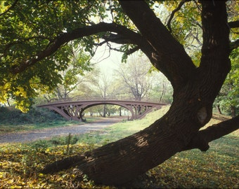 24x36 Poster; Central Park Bridge New York City