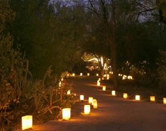 Luminary Bags with BatteryTea lights included Sets of 24 / Custom Luminary Bags / Personalized Luminary Bags  / Luminary bags