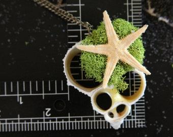 ShellStopper 16 inch Art Wearable Necklace