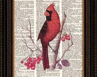 Red Cardinal--Vintage Dictionary Art Print---Fits 8x10 Mat or Frame--Vintage Dictionary Art Print-Fits 8x10 Mat or Frame