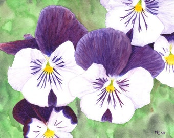 Original watercolor painting | White, purple and yellow pansies flowers on a green background (unframed) | Painting by Savousepate