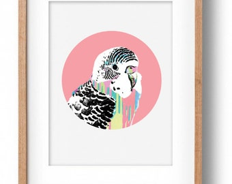 Okay Luna 'Pink Budgie' Print A3