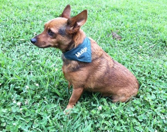 Custom Embroidered Dog Bandana - available in assorted colors
