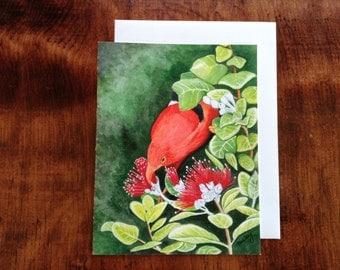 I'iwi Bird on Ohia Lehua Blossom Notecard