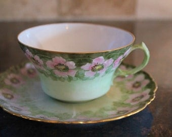 Hand Painted Cup and Saucer