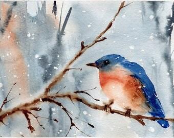 Watercolor art. Bird print. Eastern Bluebird