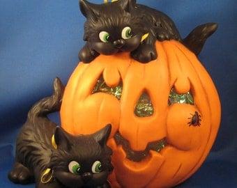 Black kittens with pumpkin