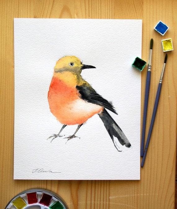 Bird painting original watercolor painting of bird cute office for Cute watercolor paintings