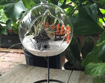 AirPlant Terrarium Kit with FREE STAND / Hanging Glass Terrarium Globe / Terrarium Glass Kit