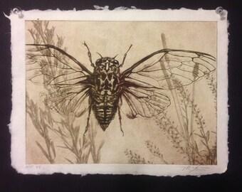 Original solarplate etching on handmade paper