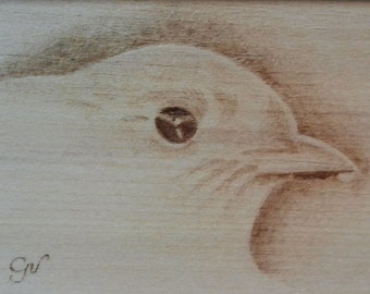 Sparrow, pyrography on wood panel