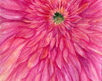 Gerbera Daisy watercolor painting original, Closeup Pink Gerber Daisy watercolor daisy painting, small floral artwork, floral artwork