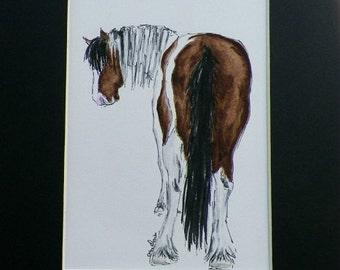 Paint Draft HorseWatercolor Original Painting by Artist Debra Alouise