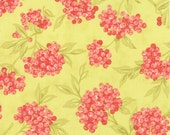 "15"" piece/remnant - Aloha Girl - Goji Berries in Citrus (green): sku 20241-18 cotton quilting fabric by Fig Tree and Co. for Moda"