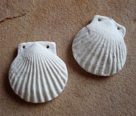 White seashell shell bisque ceramic clay by busterbeanknows for Bisque ceramic craft stores