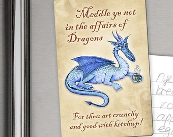 Do Not Feed The Dragon Magnet