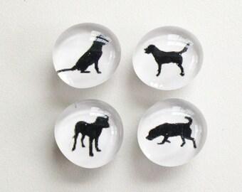 SALE - Good Dog Magnets - slightly seconds - set of 4