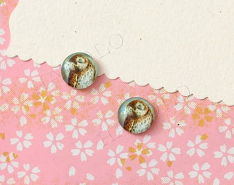 Sale - 10pcs handmade owl round clear glass dome cabochons 12mm (12-1139)