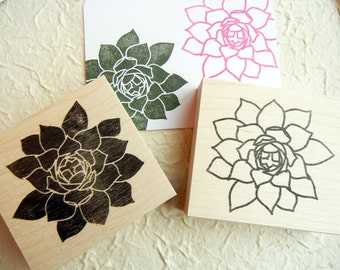 Succulent Cactus Rubber Stamp // Hens and Chicks Plant Rubber Stamp - Handmade by BlossomStamps