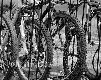Bikes Photo, Bicycle Photography, Archival Black and White Fine Art Photo Print, Row of Rugged Bicycle Tires Parked in Bike Stand