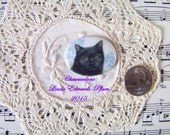 Cameo Cute as can be Black Cat with Blue Flowers Oval 40x30 Hand applied porcelain fired decals ECS