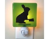 Rabbit Night Light - Hand Painted Glass Night Light - Humor