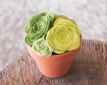 Felted Succulent Potted Plant, Eo-Friendly Cactus, Planter, Terrarium, Felt Flowers, Large Everlasting Home Decor,