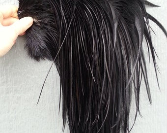 "12 Long Fine Black Rooster Hackle Feathers (7-10"" plus) For Hair Extensions and crafts- Stock No. ESTENFELD"