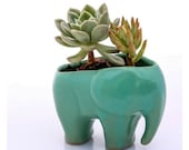 Elephant planter, ceramic succulent planter,  handmade pottery planter , mint green elephant
