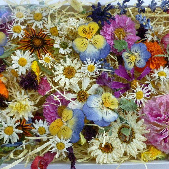 Dried Flowers, Confetti, Dry Flowers, Gift for Her, Daisies, Pansies, Wildflowers, Wedding Decor, Summer Wedding