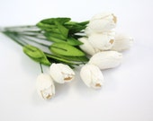 Enchanted  Passion  Series  -Tulips - Pure White