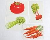 Vintage flash cards, 4 school pictures retro paper ephemera scrapbooking supplies tomato beets celery carrots, children kitchen illustration