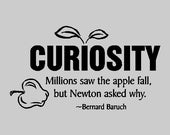 Curiosity...Inspirational Wall Decal Removable Inspiring Wall Quote Sticker Bernard Baruch Quote