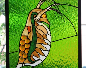 Daphnia Crustacean Fused Glass Panel Made to Order