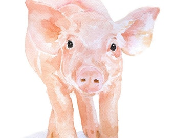 Pig Watercolor Reproduction - 4 x 6 in - Giclee Fine Art Print - Watercolor Painting Print