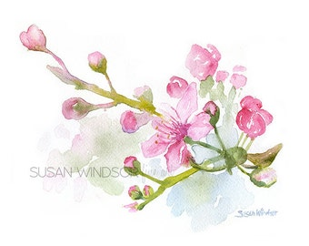 Cherry Blossoms Watercolor Painting Giclee reproduction 10 x 8 Floral - 8.5 x 11 Fine Art Print