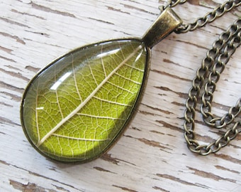 Real Leaf Necklace - Chartreuse and Antique Brass Botanical Teardrop Necklace